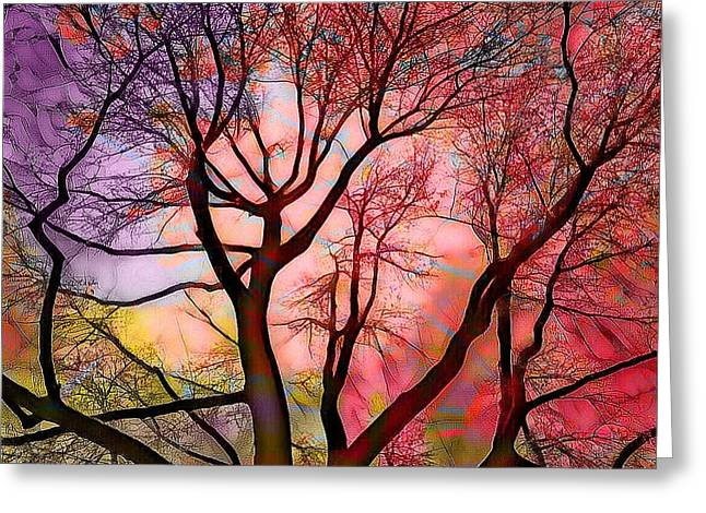 Stained Glass Sunrise 2 Greeting Card