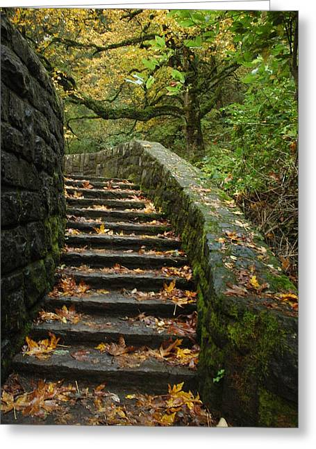 Stairway To Fall Greeting Card by Lori Mellen-Pagliaro