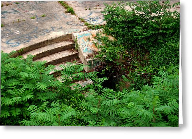Stairway To Greeting Card by Wayne Higgs