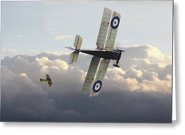Stalked - Se5 And Albatros Dlll Greeting Card by Pat Speirs