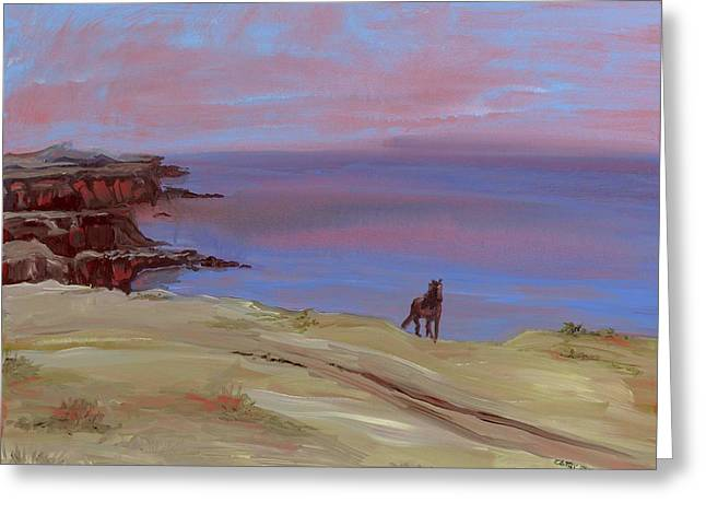 Stallion At Dingle Bay Greeting Card by Cathy France