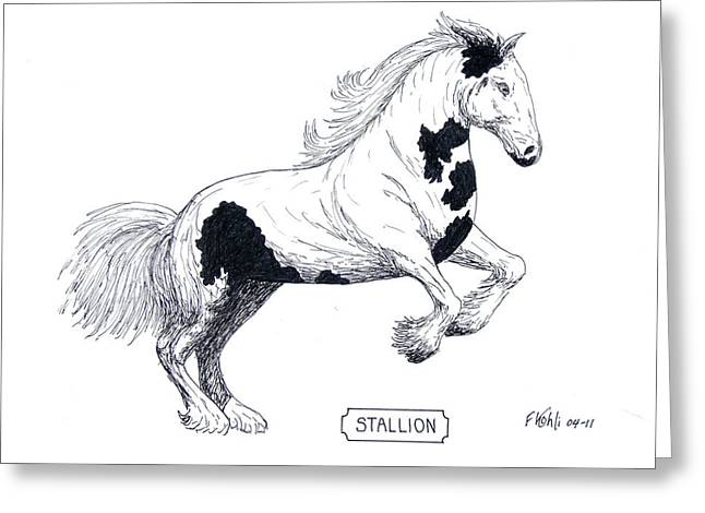 Stallion Greeting Card by Frederic Kohli