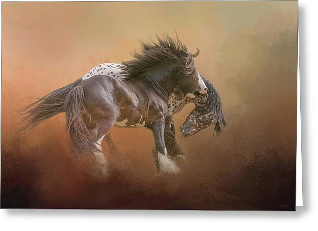 Stallion Play Greeting Card
