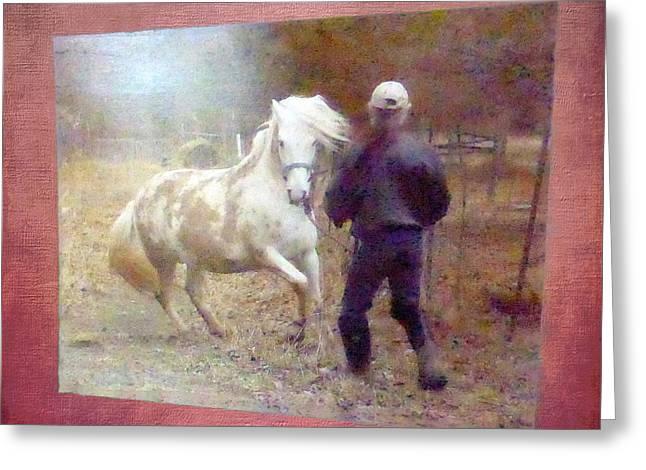 Stallion's Springtime Emotions Greeting Card by Patricia Keller