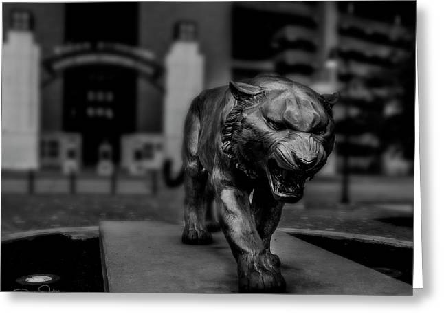 Stand Right Up And Roar Greeting Card by Damien Tullier