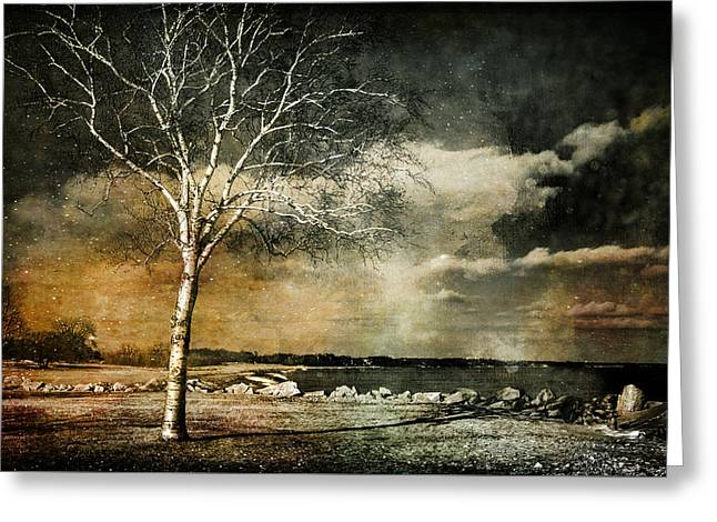 Stand Strong Greeting Card by Susan McMenamin