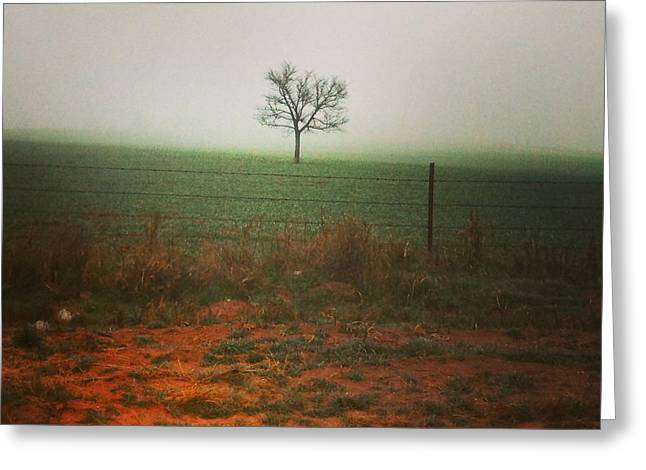 Standing Alone, A Lone Tree In The Fog. Greeting Card