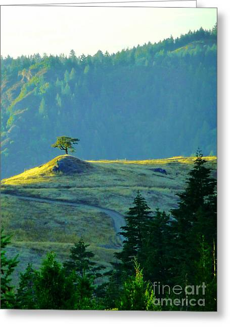 Standing Alone Greeting Card by JoAnn SkyWatcher