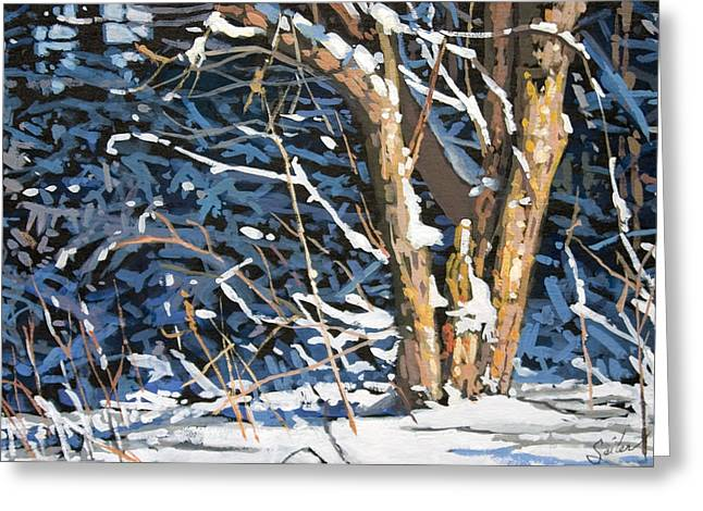 Standing Alone Greeting Card by Larry Seiler