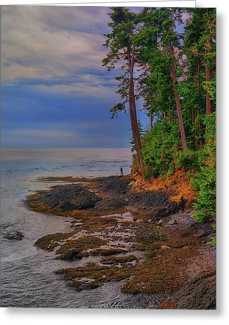 Standing By The Sea Greeting Card