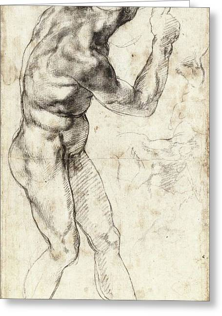 Standing Male Nude, Turned Right Greeting Card by Michelangelo Buonarroti