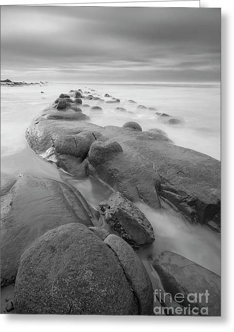 Standing On The Rocks Greeting Card