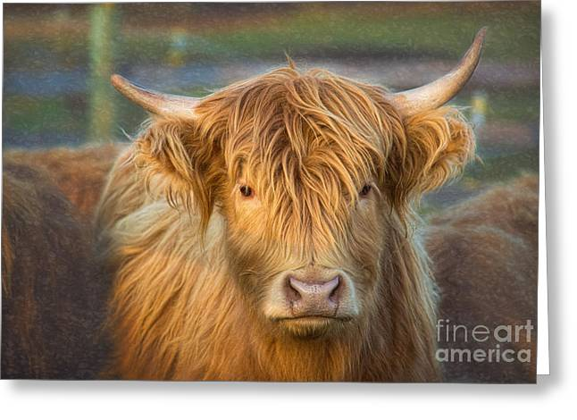Standing Out In The Herd Greeting Card
