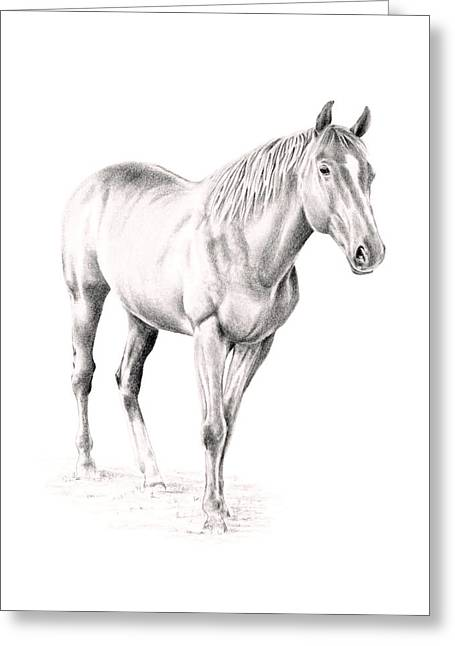 Standing Racehorse Greeting Card