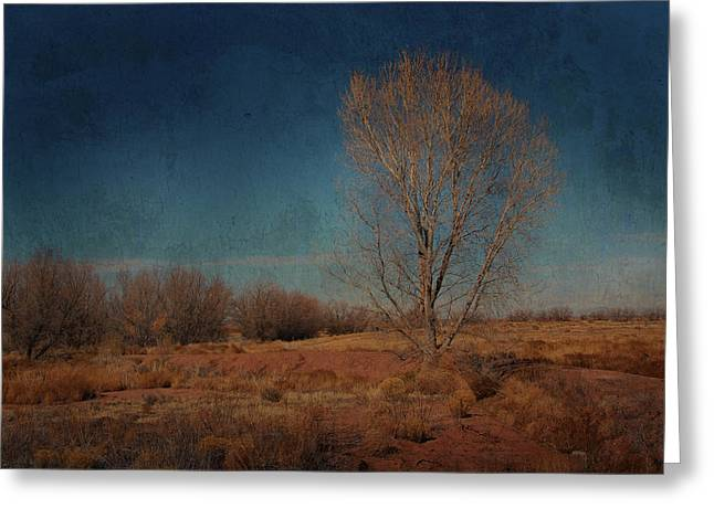 Standing Solo Greeting Card by Barbara Manis