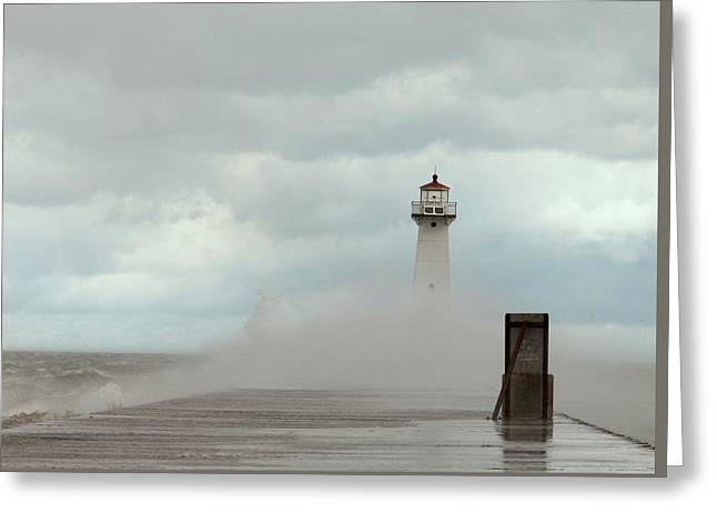 Greeting Card featuring the photograph Standing Tall Against The Storm by Chris Babcock