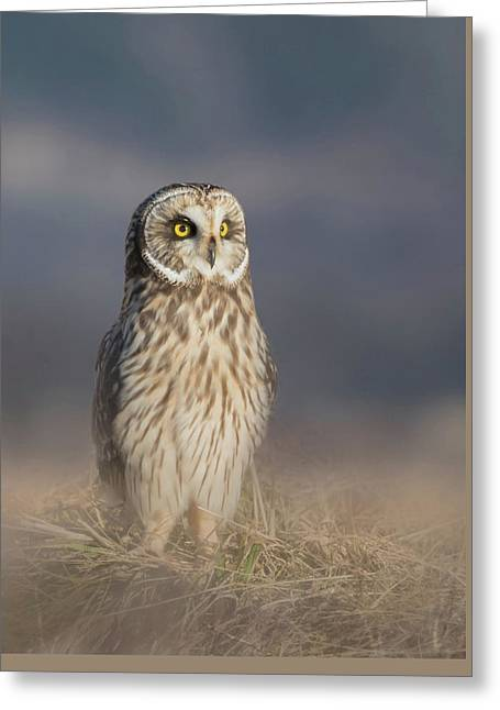 Greeting Card featuring the photograph Standing Tall by Angie Vogel