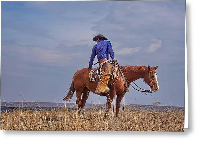 Standing Tall In The Saddle Greeting Card