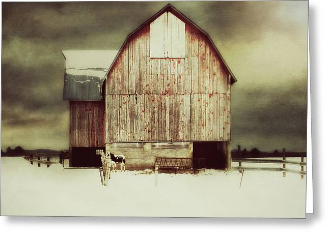 Standing Tall Greeting Card by Julie Hamilton