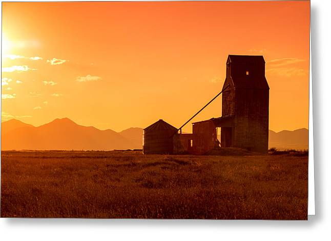 Stanford Sunset Greeting Card by Todd Klassy