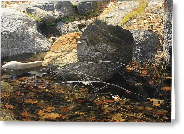 Greeting Card featuring the photograph Stanislaus Rocks Spring by Larry Darnell