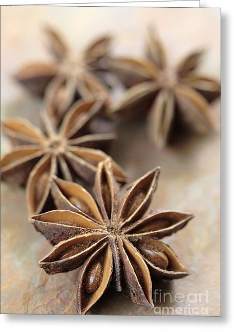 Star Anise  Greeting Card
