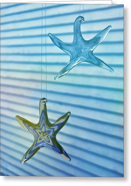 Star Bright Greeting Card by JAMART Photography