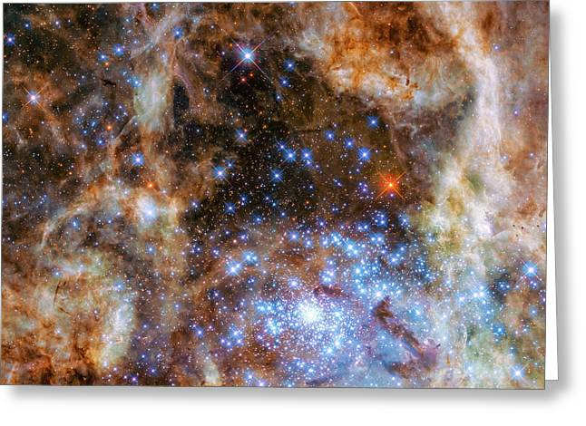 Star Cluster R136 Greeting Card by Marco Oliveira