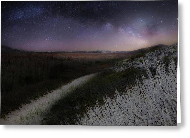 Star Flowers Greeting Card by Bill Wakeley