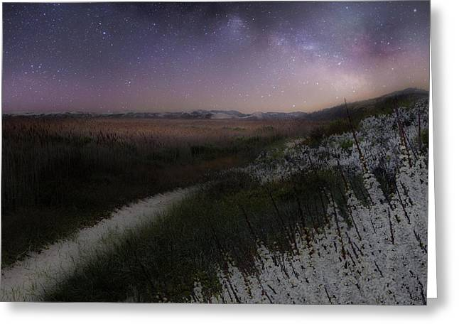Greeting Card featuring the photograph Star Flowers Square by Bill Wakeley