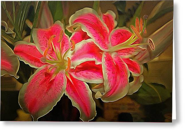 Star Gazer Lilies Greeting Card