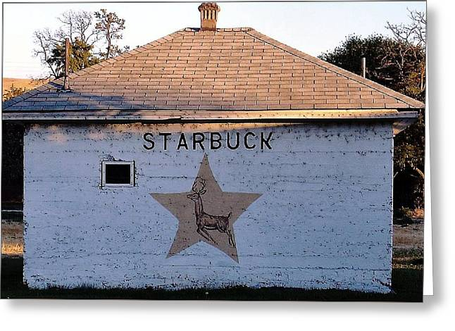 Starbuck Washington Greeting Card by Robert Morrissey