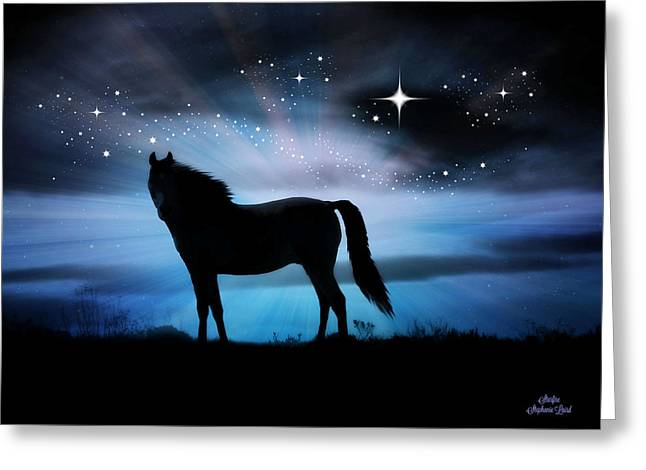Starfire Greeting Card by Stephanie Laird