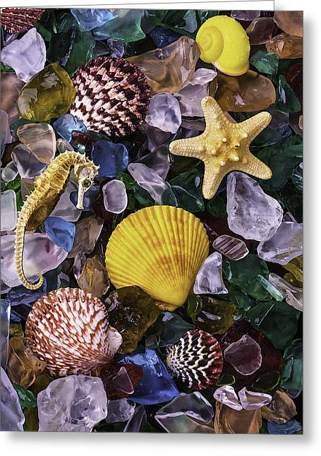 Starfish And Sea Horse Greeting Card by Garry Gay
