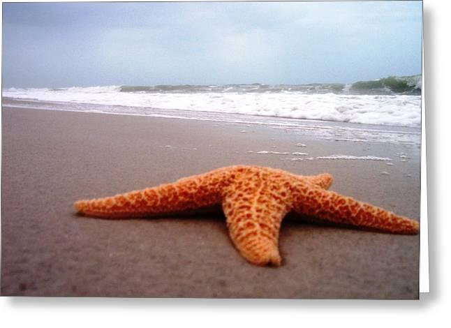 Anna Villarreal Garbis Greeting Cards - Starfish Beach Greeting Card by Anna Villarreal Garbis