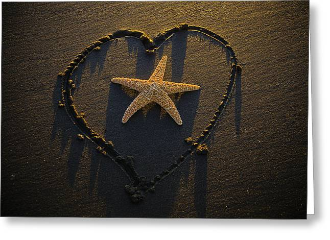 Starfish Inside Heart Greeting Card by Garry Gay