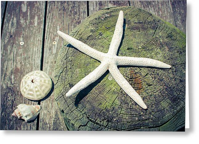 Starfish On Old Wood Dock Greeting Card by Colleen Kammerer