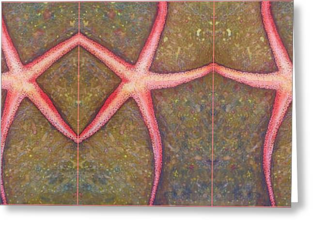 Starfish Pattern Bar Greeting Card