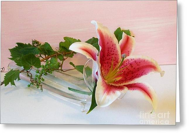 Stargazer And The Grapevine Greeting Card