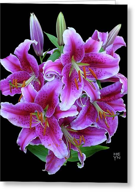 Stargazer Lily Cutout Greeting Card by Shirley Heyn