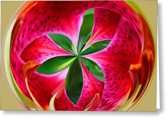 Greeting Card featuring the photograph Stargazer Lily Orb by Bill Barber