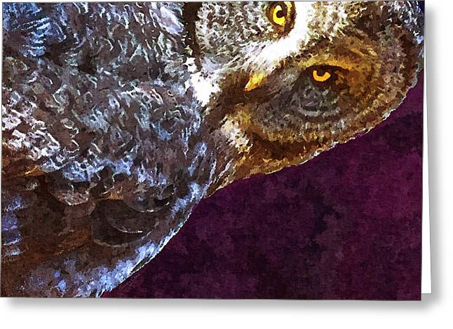 Staring - Owl Portrait Greeting Card