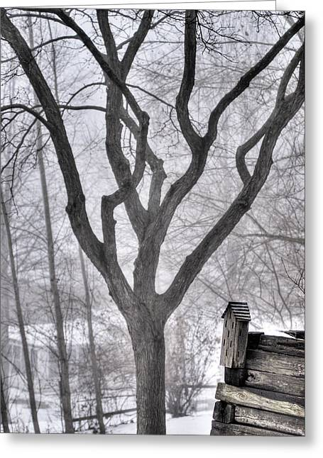 Stark Winter Images Greeting Card by Don Wolf