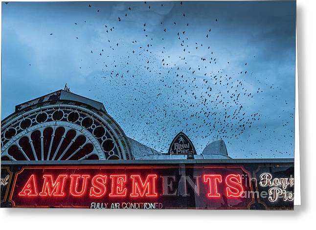 Starlings Over Aberystwyth Royal Pier Greeting Card
