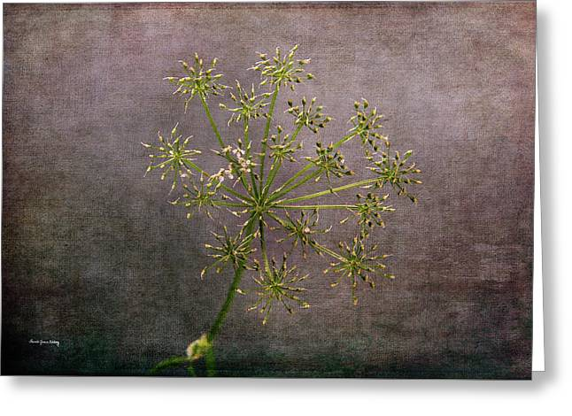 Greeting Card featuring the photograph Starry Flower by Randi Grace Nilsberg