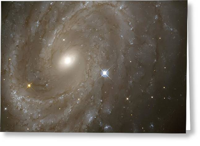 Stars And Spiral Galaxy Greeting Card by Jennifer Rondinelli Reilly - Fine Art Photography