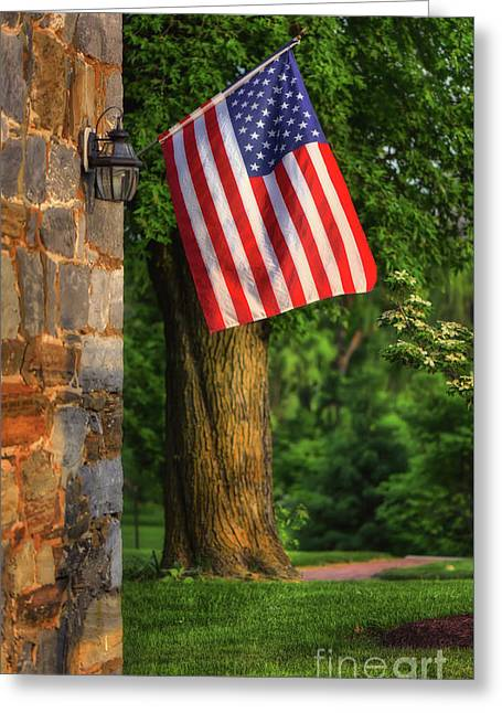 Stars And Stripes Greeting Card by Lois Bryan