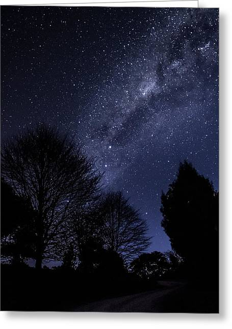 Stars And Trees Greeting Card by Martin Capek