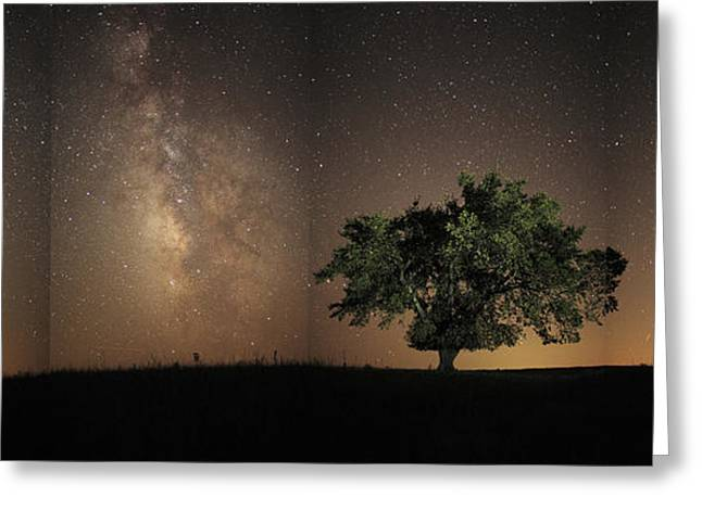 Stars Shine Brightly Greeting Card by Jim Richardson