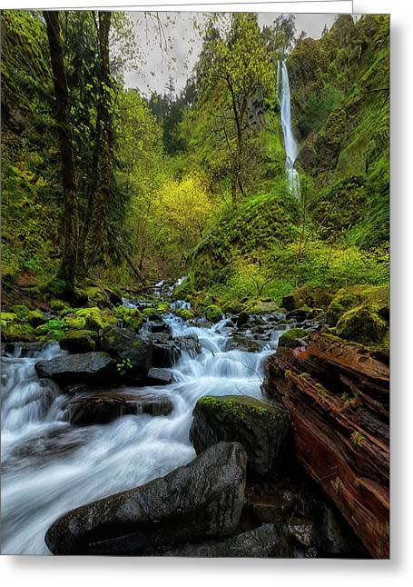 Starvation Creek And Falls Greeting Card by Ryan Manuel